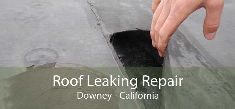 Roof Leaking Repair Downey - California